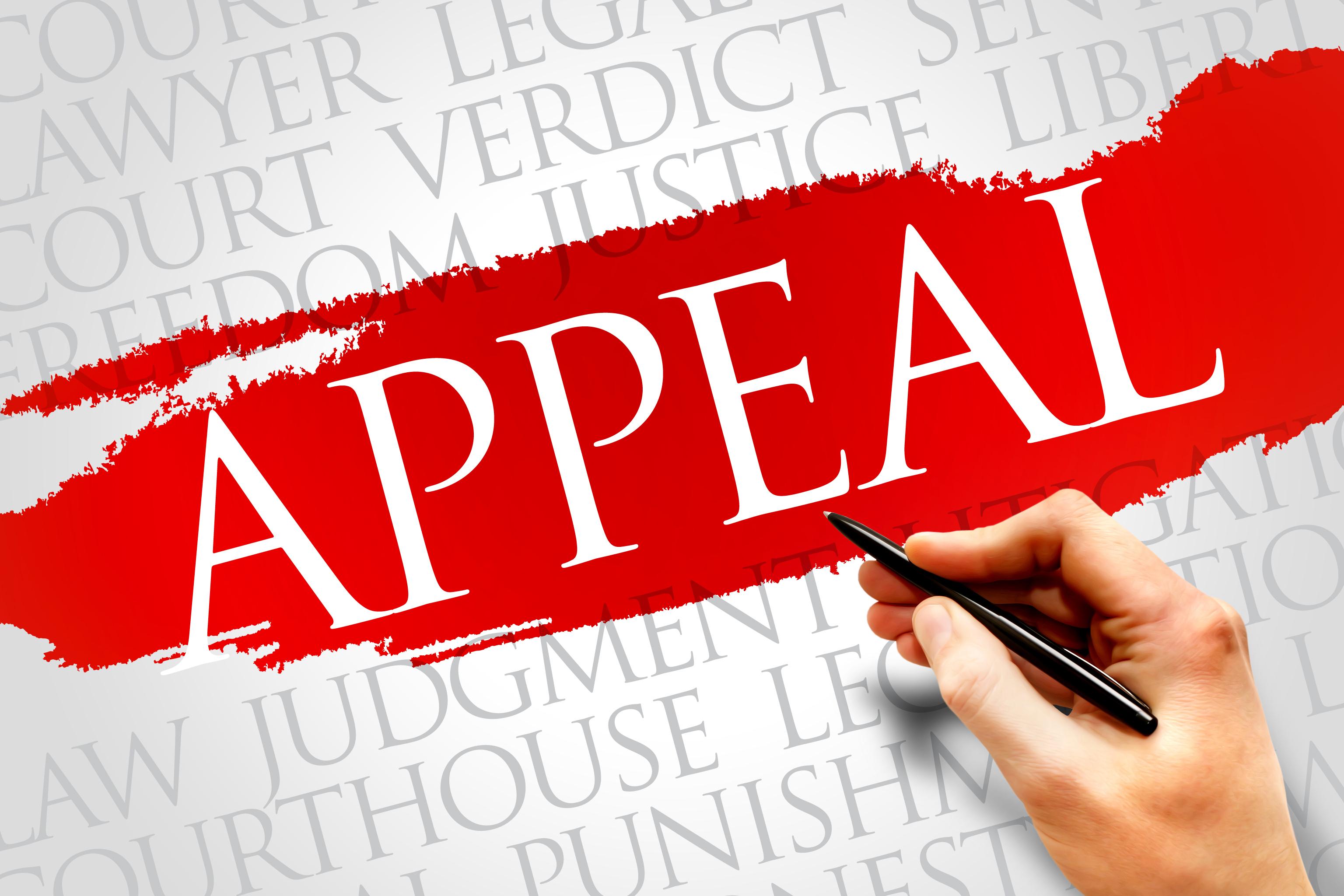 Redbridge extensions appeals